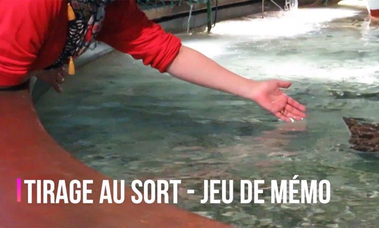 Photo of Résultat du jeu concours – Le Jeu de Mémo