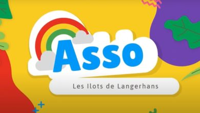 Photo of Association « Les Ilots de Langerhans  » – 1 an déjà !