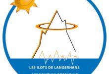 Photo of Les Ilots de Langerhans – Reconnue d'Intérêt Général !
