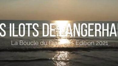 Photo of Les Ilots de Langerhans : 1er !!