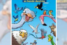Photo of Jeu concours «Ki K'en veut !» – BD «Les Oiseaux» !